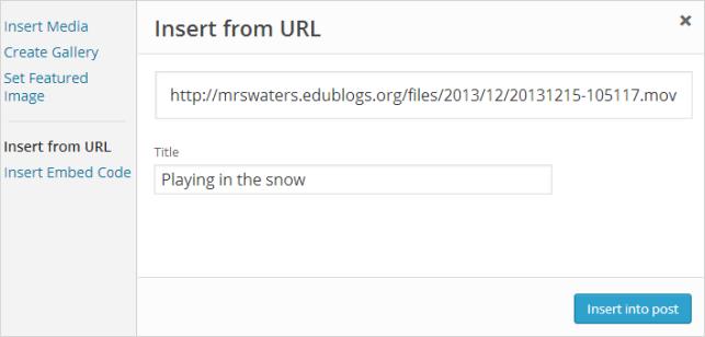 Add video URL