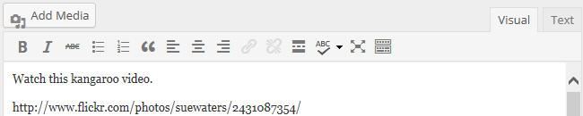 Video URL in post