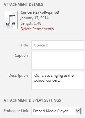 Audio attachment details