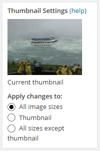 Thumbnail Settings