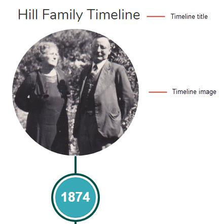 Timeline general settings