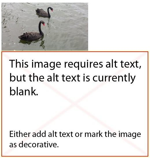 Missing Alt Text