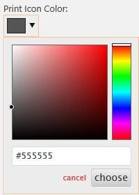 Print icon color