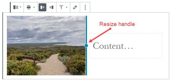 Resize using resize handle