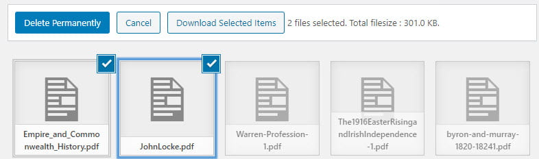 Select the media items you want to download