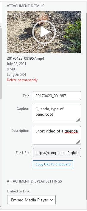 Complete video attachment details